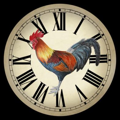 Fancy rooster roman really